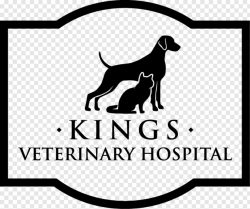 Kings Veterinary Hospital