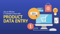 Ecommerce Data Entry Services for Shopping Carts & Platform